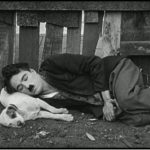 Fundação de Bolonha torna público acervo de Chaplin